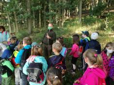 Procházka do okolních lesů s lesníkem panem Mikešem